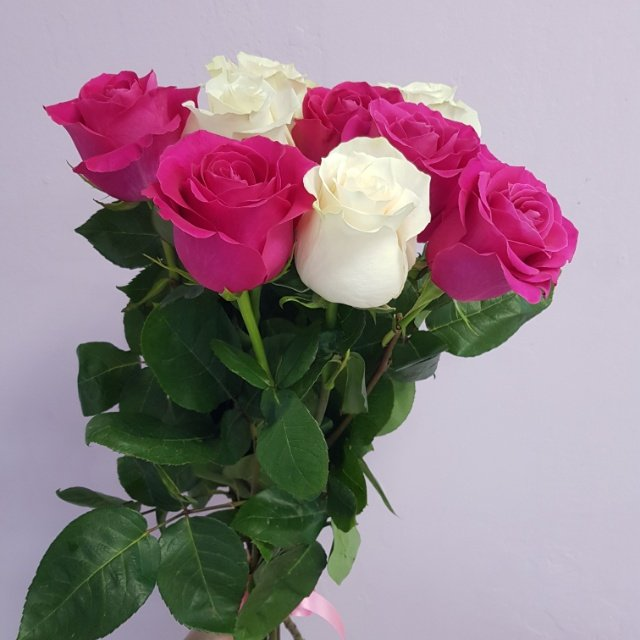 Розы, Mila Flowers, Урай