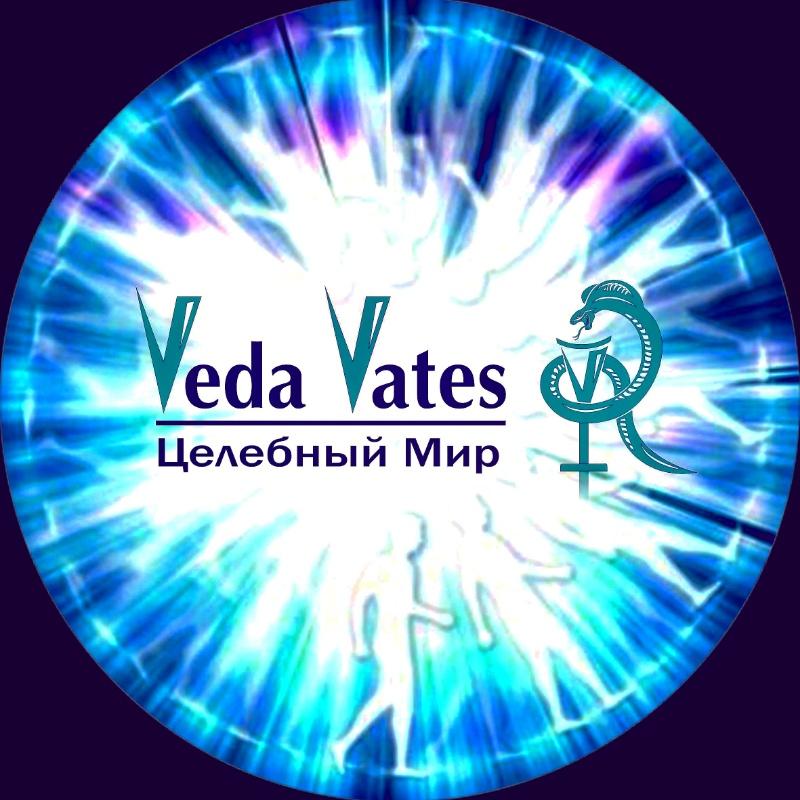 логотип компании Veda Vates