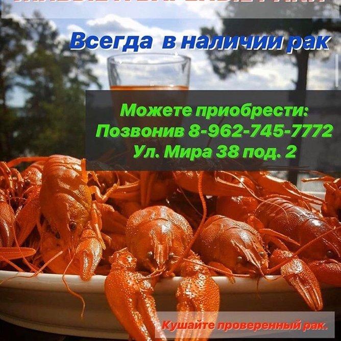 Rakoed_mozdok, Живые Раки в городе Моздоке, Моздок