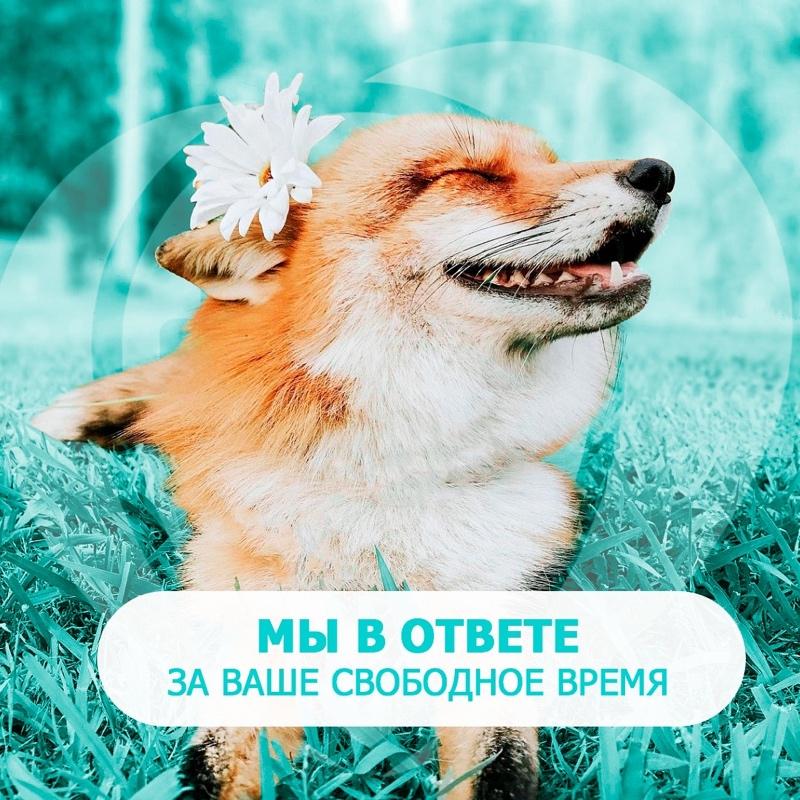 Любимый город в ответе за ваше свободное время, Любимый город, Ижевск