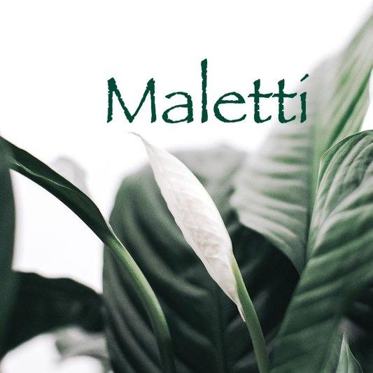 Malettint,Студия маникюра,Нижний Тагил