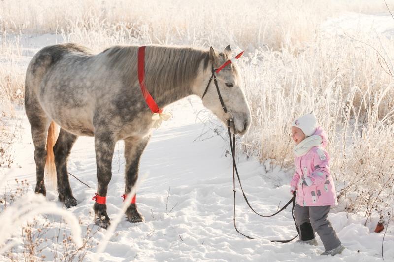 Мини-ферма с животными, Семейных отдых, творчество и детское развитие, Жигулевск