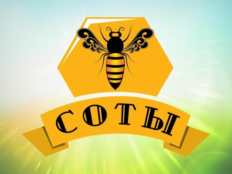 логотип компании СОТЫ