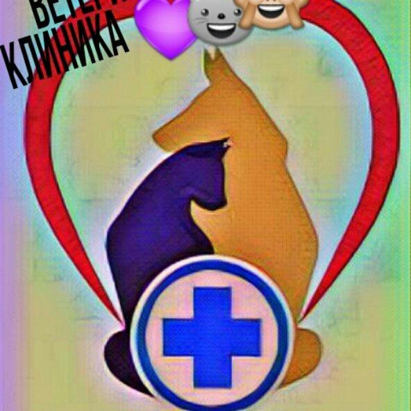 Ветеринарная клиника,Ветеринарная клиника,Караганда