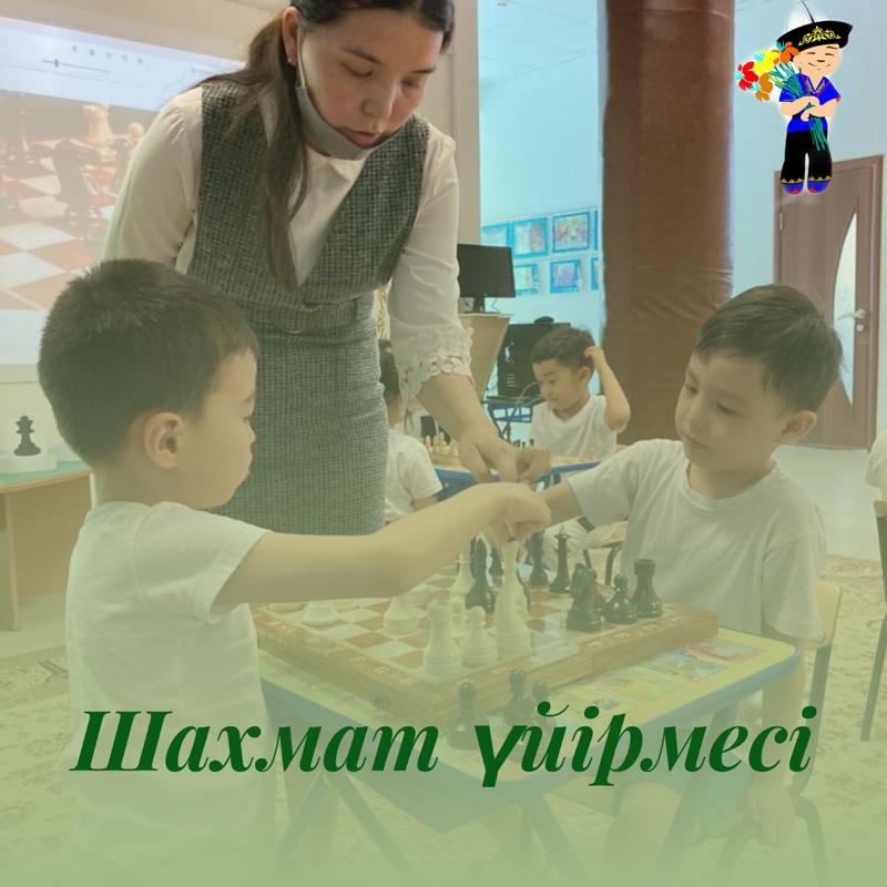 Шахмат үйірмесі