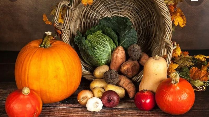 Осень - это вкусно! Заходите к нам и сами убедитесь.Ну а если вам лень из-за дождя выходить на улицу, то звоните и заказывайте у нас вкусные обеды и ужины, мы с удовольствием все доставим и на работу и домой!🚚🥗☕️