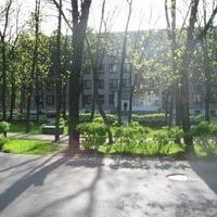 Поликлиника №4 г.Витебска, Поликлиника для взрослых, vitebsk
