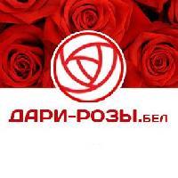 Дари-розы. бел, Магазин цветов, Доставка цветов и букетов, Интернет-магазин, vitebsk