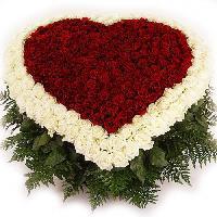 Алая роза, Магазин цветов, nadym