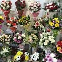 Магнолия, Магазин цветов, kyzylorda