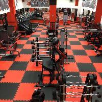 Alpha Male Gym, Спортивный, тренажёрный зал, nadym