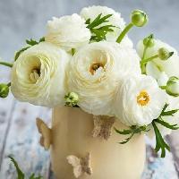 Салон цветов Железняковой, Магазин цветов, Товары для интерьера, Магазин подарков и сувениров, severobaykalsk