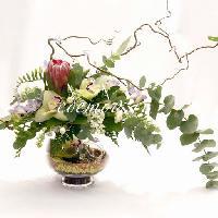 Цветы Эдема, цветочный салон, habarovsk