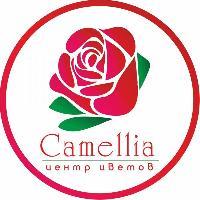 Camellia, Магазин цветов, kyzylorda