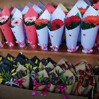 ЦВЕТЫ В ГОРОДЕ КЫЗЫЛОРДА, Магазин цветов, kyzylorda