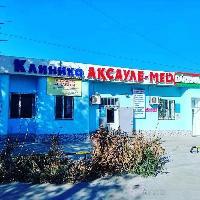 Ақсауле-мед, Клиника, kyzylorda