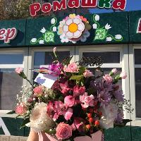 Ромашка, Магазин цветов, stepnogorsk