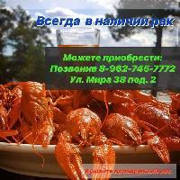 Rakoed_mozdok, Живые Раки в городе Моздоке, mozdok