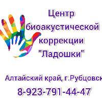 Центр биоакустической коррекции Ладошки, Центр развития ребёнка, rubcovsk