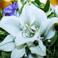 Бутон, флористическая студия, Цветы, Доставка цветов, Товары для праздничного оформления / организации праздников,, zelenodolsk