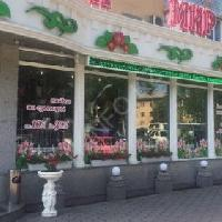 Мир цветов, Магазин цветов, Доставка цветов и букетов, Искусственные растения и цветы, taldykorgan