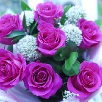 Колибри, Магазин цветов, Доставка цветов и букетов, Магазин подарков и сувениров, kyzyl