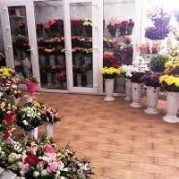 Мария, Магазин цветов, essentuki