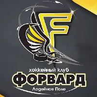 Ледовая арена Форвард, Хоккейный клуб/Каток, lodeynoe_pole