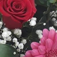 salon_cvety_kosmos, Доставка цветов , aktobe