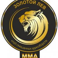 Золотой лев, зал боевых единоборств, Детские / подростковые клубы, vladimir