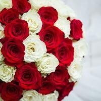 ЦветоМаркет, сеть цветочных салонов, moscow